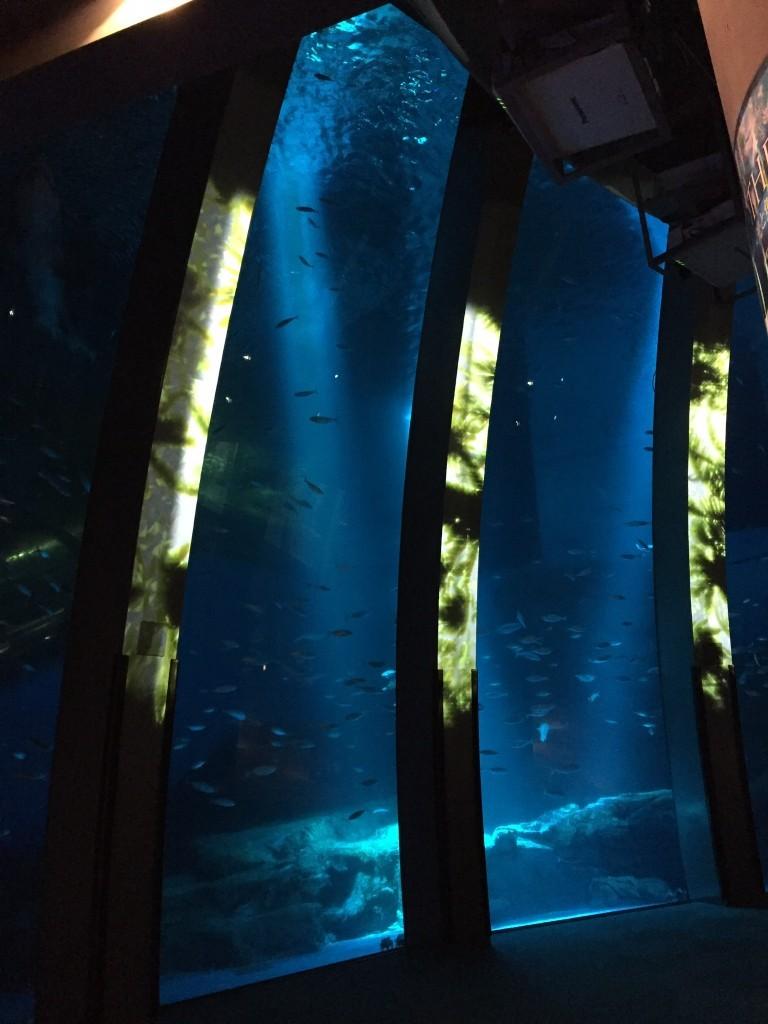 THE OASIS ~光と魚たちのショータイム~