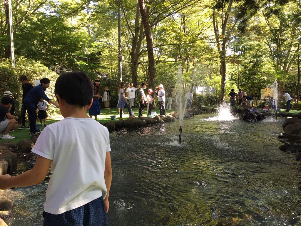 公園 キャンプ 清水