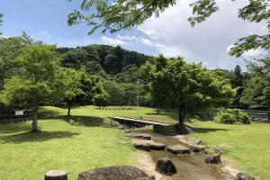 稲ヶ崎キャンプ場フリーサイト